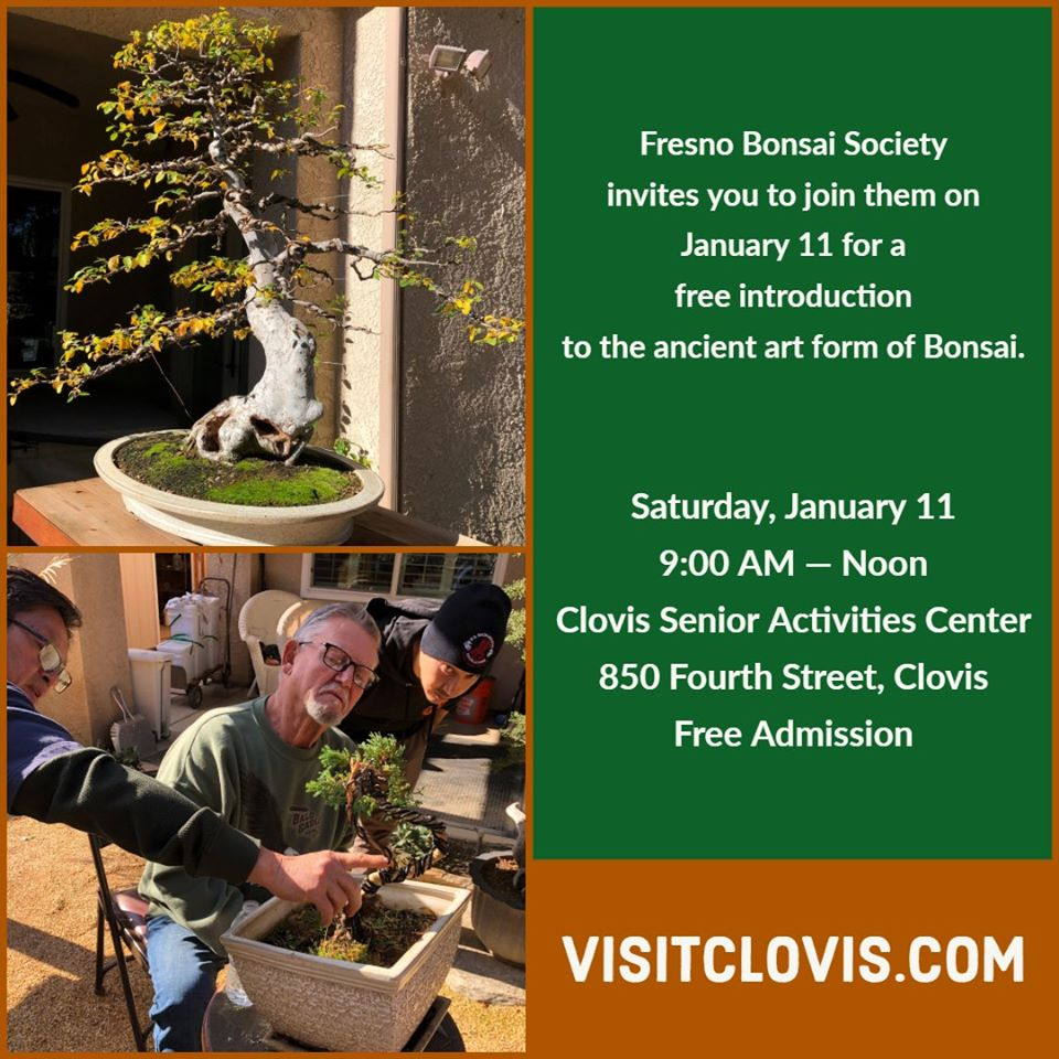 Fresno Bonsai Society